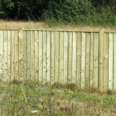 Featheredge Panel - 1.83m x 0.9m